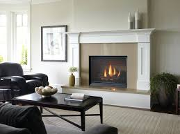 beautiful removing gas fireplace suzannawinter com