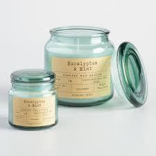 eucalyptus mint apothecary jar candle world market