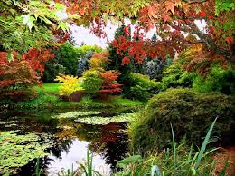 Vandusen Botanical Garden Wedding Vandusen Botanical Garden Wedding Vandusen Botanical Gardens