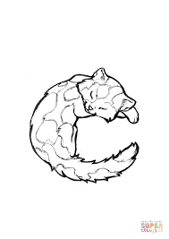 c is for cat coloring page c is for cat coloring page free printable coloring pages