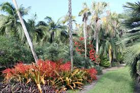 Fairchild Botanical Garden by U S South Garden Housecalls