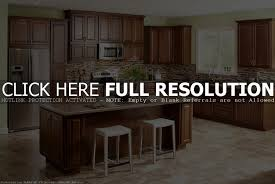Galley Style Kitchen Remodel Ideas Brilliant Kitchen Design Ideas Galley Style Smart Solutions For