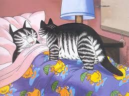 29 best ca bernard kliban images on kliban cat cat