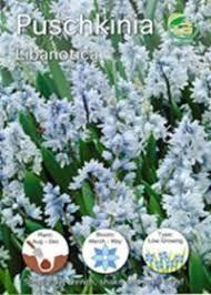 1 50 g plants shake n rake butterfly and bee seed shaker