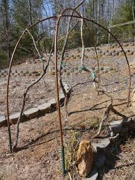 revised and renewed trellis garden conversations