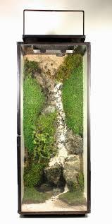 127 best vivarium u0027place of life u0027 images on pinterest plants