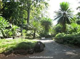 Oahu Botanical Garden by 225 Best Places To Visit While In Oahu Images On Pinterest Oahu
