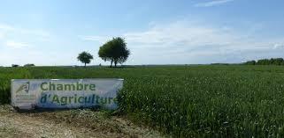 chambre d agriculture future pac trop d incertitudes estiment les chambres d agriculture