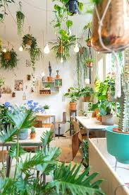 indoor plant display 99 great ideas to display houseplants garden web balcony