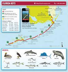 Map Of Miami Florida Map Of Florida Keys And Key West Miami Tour Company