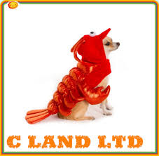 lobster halloween costumes costumes dog clothing pet halloween lobster clothes costume buy