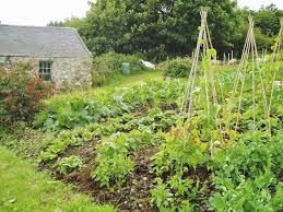 self sustaining garden how much land for self sufficient living home farmer