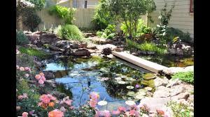 austin texas native plants landscape design austin austin landscape design landscape