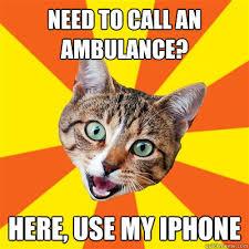 Ambulance Meme - need to call an ambulance cat meme cat planet cat planet