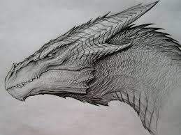 best 25 dragon drawings ideas on pinterest dragon art cool