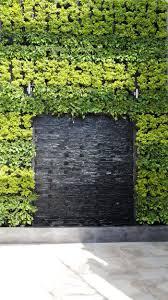 122 Best Going Vertical Images On Pinterest Landscaping