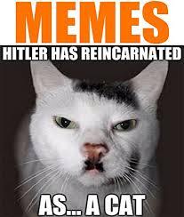Studio Memes - studio meme the best price in savemoney es