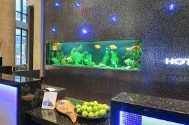 Fish Tank Desk by Front Desk Area With Fish Tank And Apples Picture Of Hotel Blu