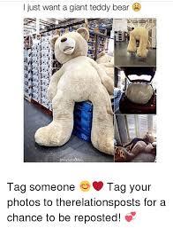 Meme Teddy Bear - i just want a giant teddy bear tag someone tag your photos to