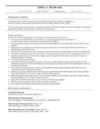 job summary resume examples electronic resume sample sample resume and free resume templates electronic resume sample senior resume senior it manager resume sample experience resumes e resume examples template