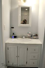 Bush Bathtub Painting Master Bathroom Vanity Refresh Teeny Ideas