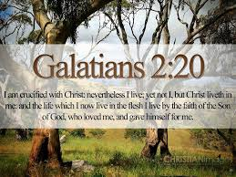 79 best word pictures new testament bible verses images on