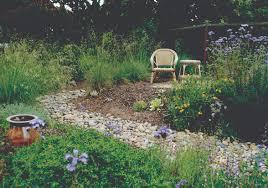 pro landscape designer on the benefits of native plants