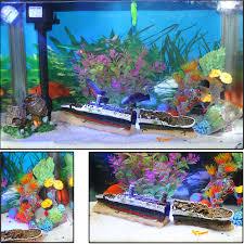 fish tank aquarium landscaping design packages a background