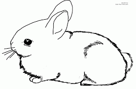 peter cottontail printable coloring pages coloring home