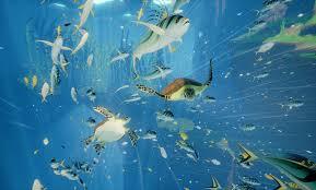 abzu is a beautiful underwater journey usgamer