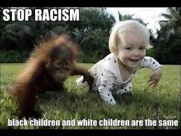Racist Meme - stop racism meme