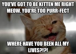 Cheesy Memes - cheesy pickup lines cat memes quickmeme
