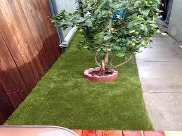 Backyard Landscaping Ideas For Dogs Grass Installation Blackwater Arizona Hotel For Dogs Backyard