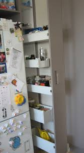Small Kitchen Ideas Pinterest Best 25 Small Kitchen Pantry Ideas On Pinterest Small Pantry