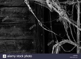 halloween spider web background cobweb or spider web dust on wall background stock photo royalty