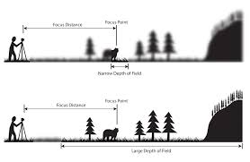 understanding depth of field a beginner u0027s guide