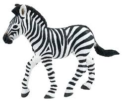 coloring pages baby zebra coloring pages baby zebra coloring