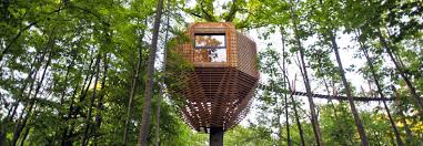 three house the origin treehouse has an amazing interior that will your
