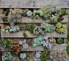 innovative youb garden planter about herb gard 12340