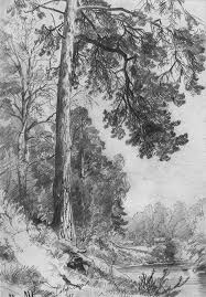 landscape drawings in pencil re introducing pencils com teaching