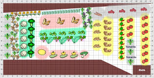 Small Backyard Vegetable Garden by Nice Beginner Vegetable Garden Layout Raised Bed Vegetable Garden