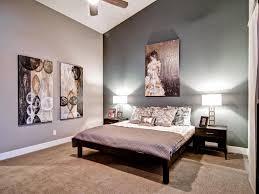 Transitional Master Bedroom Ideas Decorations Grey Bedroom Decor Idea With Green Transitional With