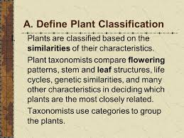 classifying ornamental plants at the completion of this unit