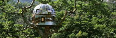 tree houses fairy tale castles in the air bibliotheca