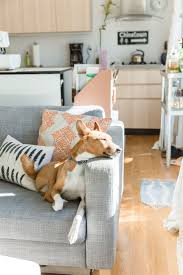 49 best pets in house tours images on pinterest house tours