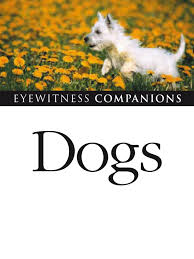 resume template customer service australian kelpie breeders north dr bruce fogle dogs dog breeds gray wolf