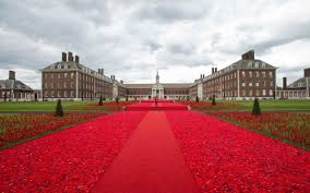 chelsea flower show poppies spectacular tribute to armed forces