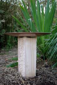 native and adapted landscape plants 38 best gillett drive project images on pinterest plants front