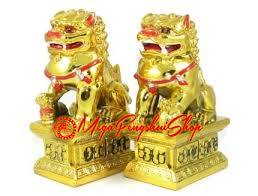 images of foo dogs feng shui foo dogs