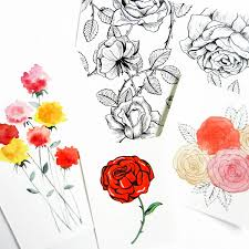 how to draw roses the postman u0027s knock